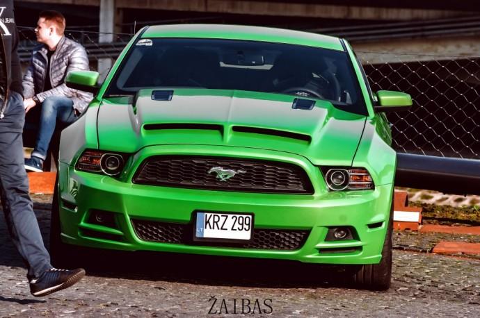 Aurelijos Ford Mustang